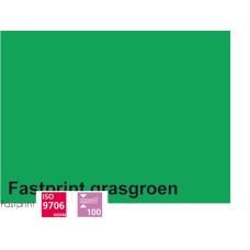 Fastprint print en kopy A4 120 gram grasgroen 100 vel
